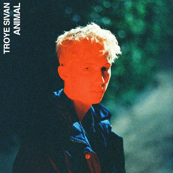 Troye Sivan – nowy singiel Animal